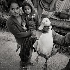 Kathmandu, Nepal, 2013 iPhoneonly