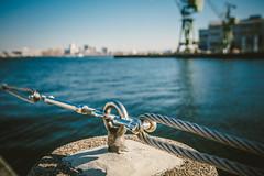 Kobe Port_4