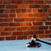 Small photo of Gavel on Blue Desk Brick Wall