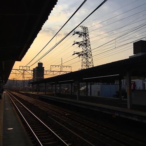 おはようございマシーン! 朝晩の冷たい風がねぇ #japanese #sky #イマソラ #いまそら