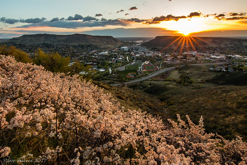 golden colorado lookoutmountain lookoutmountainroad sunrise landscape city spring flowers wildplumflowers sunburst coorsbrewery coloradoschoolofmines