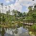 17-04-17_BotanicGarden_P1020807