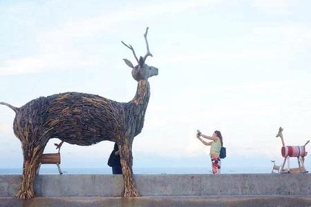 台灣好行東部海岸線~台11線海洋風光迷人、原住民部落文化精采