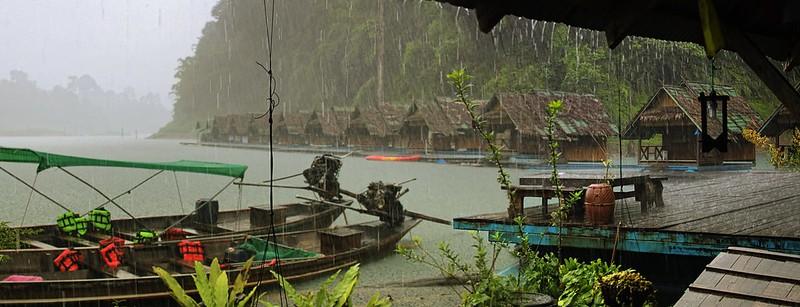 When it rains it rains in the rainforest