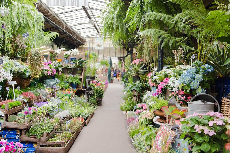 Flower Market at Île de la Cité