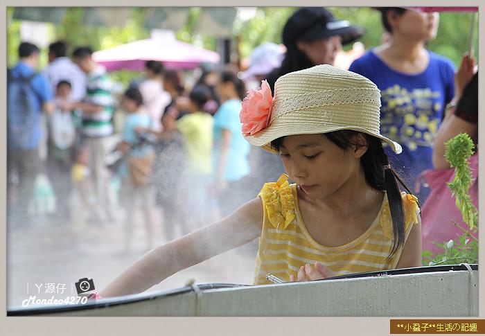台南小吃綠盈牧場82