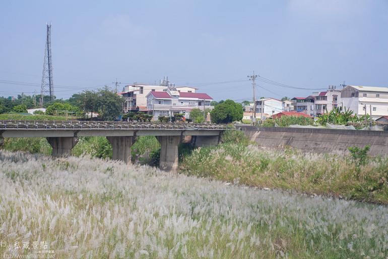 台南私藏景點-南化北寮橋芒草 (12)