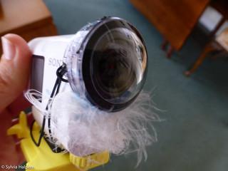Flickr-012