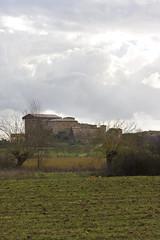Monteroni_pan04