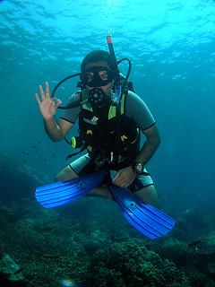 "<img src=""padi-scuba-diver-course-tioman-island-malaysia.jpg"" alt=""PADI Scuba Diver Course, Tioman Island, Malaysia"" />"