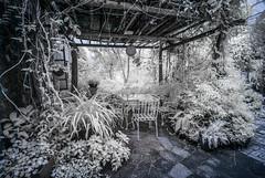 Garden Restaurant in IR