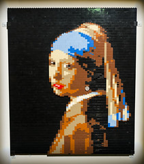 The Art of The Brick 4-10-14 21