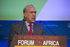 Africa Forum 2014
