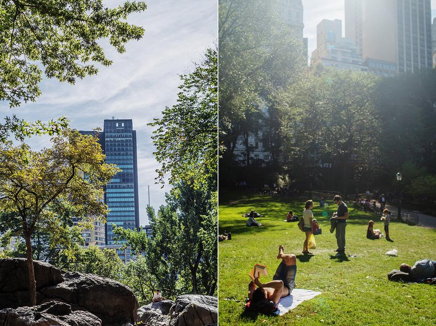 centeal park new york