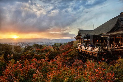 travel autumn trees sunset sky mountains flower color nature grass rain japan architecture clouds forest geotagged outdoors temple nikon kyoto worship asia peace afternoon terrace vibrant famous prayer religion scenic citylife tranquility buddhism landmark tourists journey zen 京都 日本 wisdom ornate shinto foilage 清水寺 kiyomizudera hdr 28300mm mapleleaves d800 koyo kyototower 亞洲