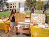 USF seed library at campus farmstand!
