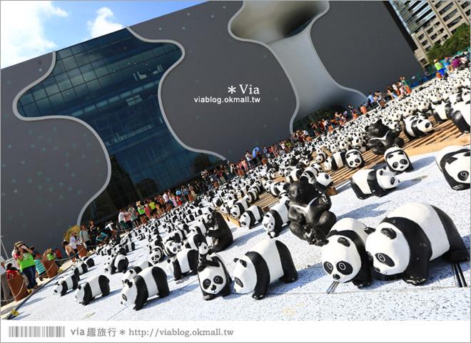 【台中】大都會歌劇院~可愛紙熊貓大軍來襲!台中七期的新亮點!4