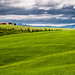 Val d'Orcia by an avel
