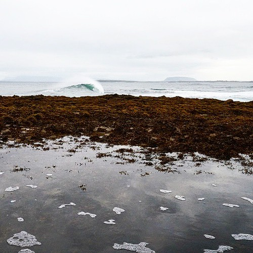 Here's an empty slab. Go ride it #ireland #surf #waves #search #magnaanima