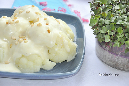 peynir soslu karnibahar