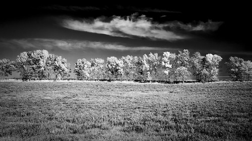 Fall 2014.  St. Croix County, Wisconsin.