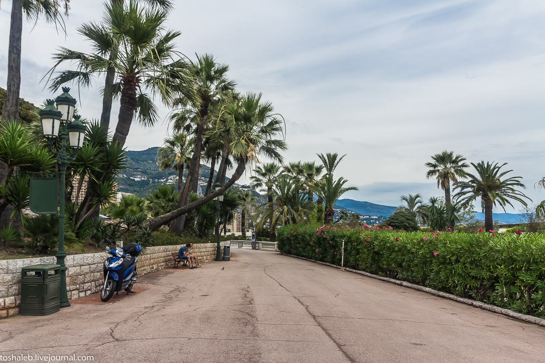 Монте Карло-16