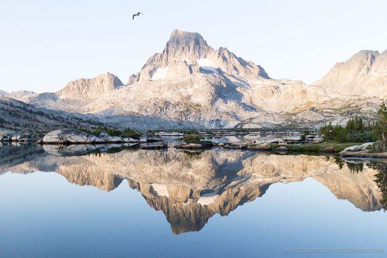 Banner Peak at dawn with bird
