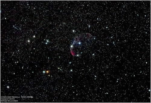 sky night canon stars timelapse time august crescent galaxy nebula astrophotography astronomy paintshoppro nightsky constellation corel astronomer 2014 400mm cygnus crescentnebula canon6d ioptron tomwildoner zeq25gt