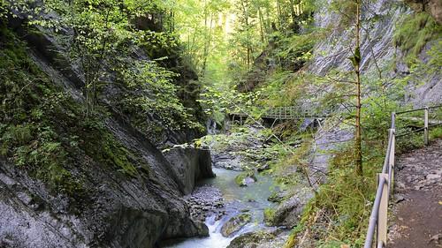 canon geotagged schweiz switzerland nikon wasser suisse hiking che wandern schlucht wanderweg broc nikonshooter cantondefribourg nikonschweiz d5300 capturenx2 ponte1112 châtelsurmontsalvens nikkor18200vrll viewnx2 geo:lat=4660743982 geo:lon=711925863