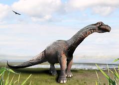 Brontosaurus - Caricature