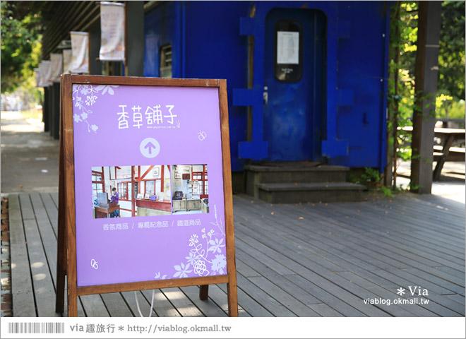 【愛情火車站】合興車站‧新竹內灣新景點!薰衣草森林進駐~有香草舖子+小甜心16
