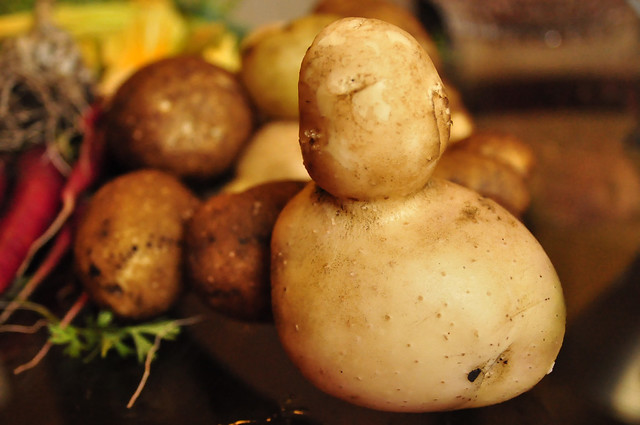 Potato Duck