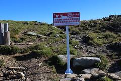 台東林管處沿途設置告示牌,這是野生動物的帝寶,遊客不該在此露營。