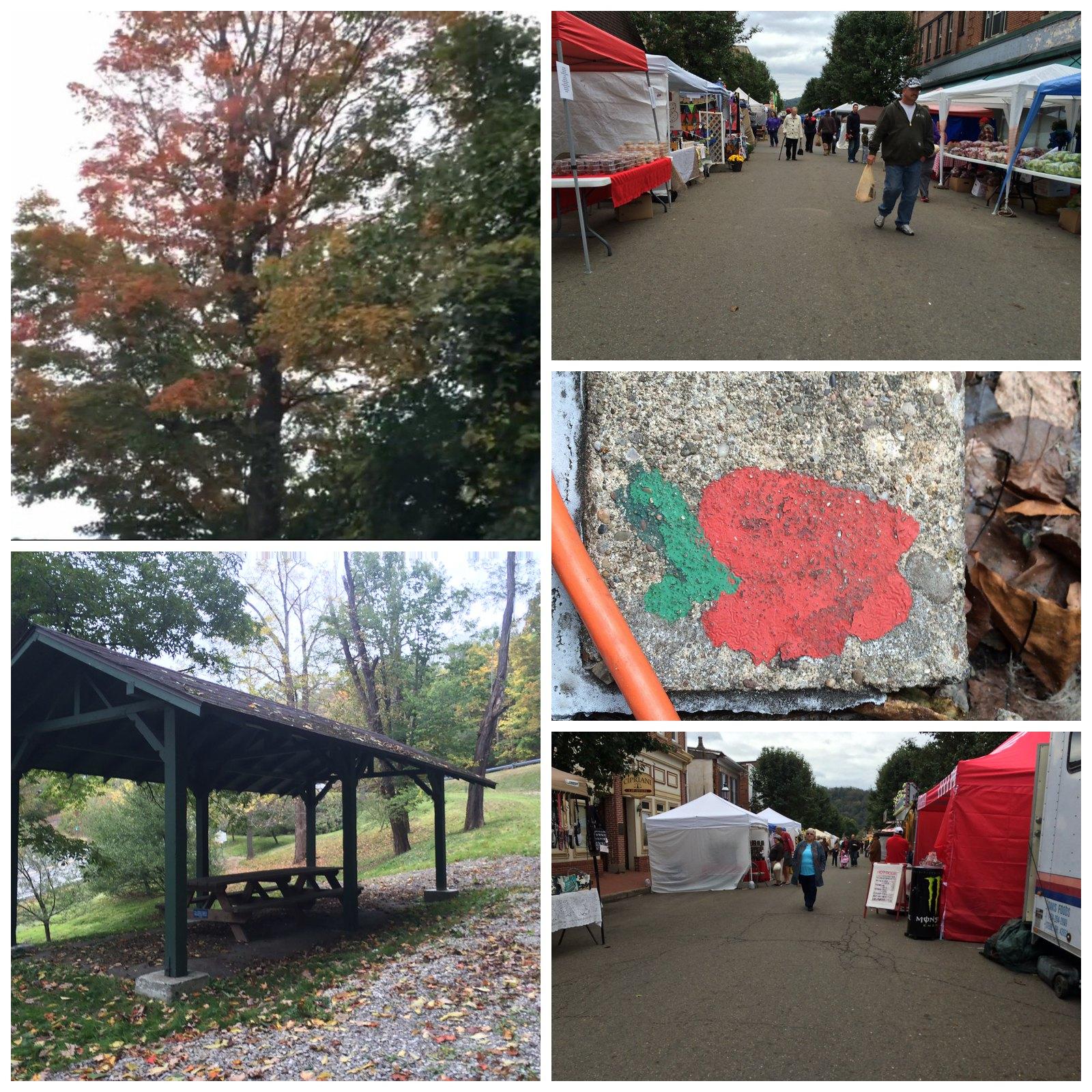 Applefest Collage