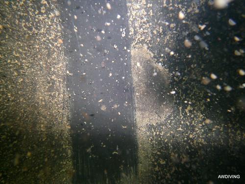 Liner van een sprinkler tank