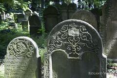 Kraków - Jewish Cemetery