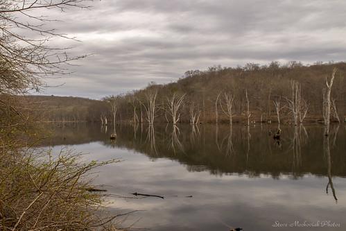 smack53 spring springtime water lake reservoir monksvillereservoir trees mountains clouds reflections nikon d3100 nikond3100 westmilford newjersey newjerseystatepark longpondironworksstatepark