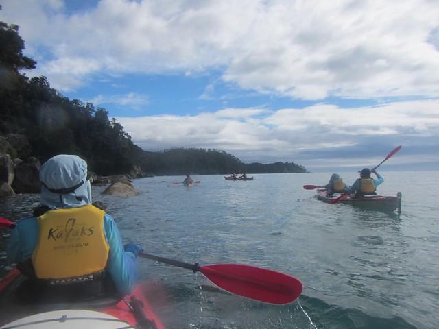 Abel Tasman Kayak, Canon POWERSHOT D20