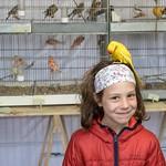 Oiseau sur tête de fille