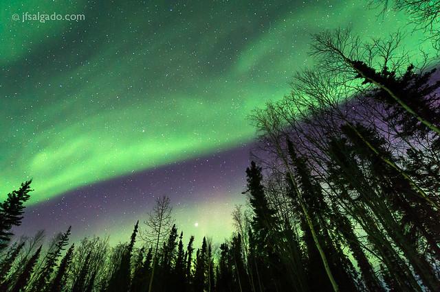 Aurora borealis [4957]