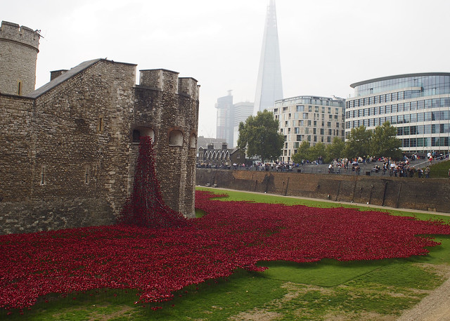 Tower of London Poppie Installment