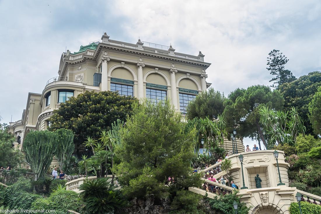 Монте Карло-9