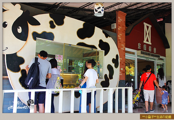台南小吃綠盈牧場47