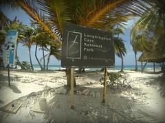 Belize-laughingbird-caye-2
