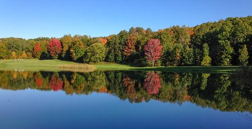 fallcolor fall michigan autumn northernmichigan iphone5c golfcourse fallcolors fallinmichigan fallgolfcourse reflection waterreflection 1000views onethousandviews