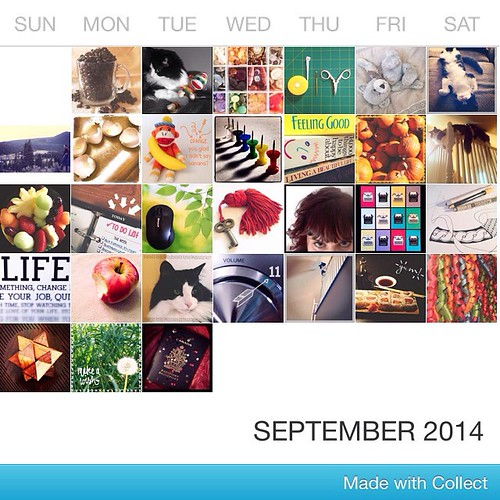 #fmsphotoaday September 2014