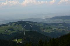 Auf dem Schauinsland (Freiburg BW)