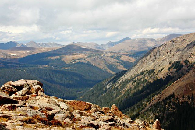 Forest Canyon, Trail Ridge Road