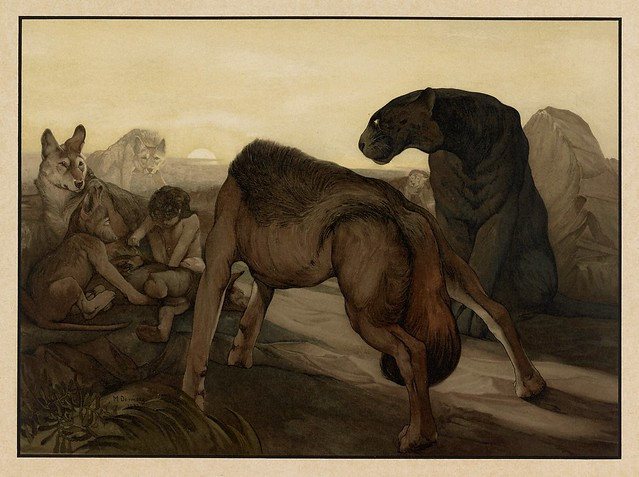 002- El consejo de la Roca-Sixteen illustrations of subjects from Kipling's Jungle Book-1903 -Library of Congress
