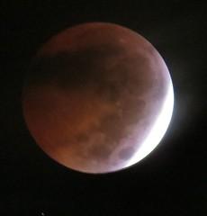 blood moon eclipse_1339-crop